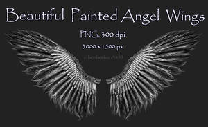 Painted Angel Wings Stock by bonbonka