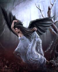 Winged Dancer by bonbonka