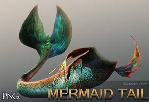 Mermaid Tail PNG Stock Image