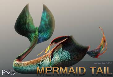 Mermaid Tail PNG Stock Image by bonbonka