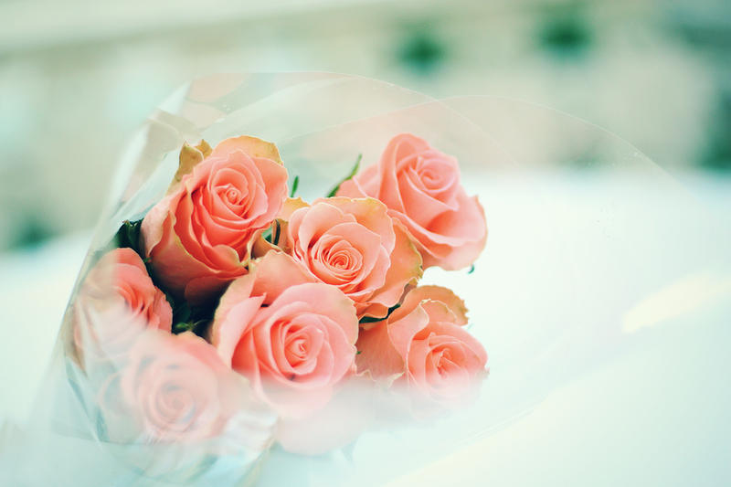 Roses by Lilibloody