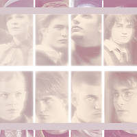 Picspam Hogwart's 4 champions by Giovyn86