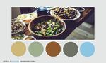 Color palette 006