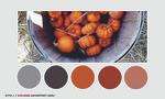 Color palette 008