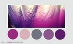 Color palette 019