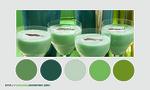Color palette 021