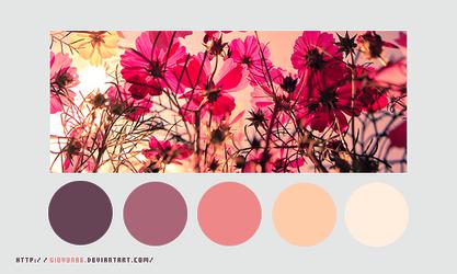 Color palette 023