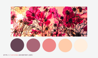 Color palette 023 by Giovyn86