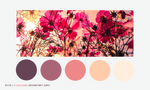Color palette 023