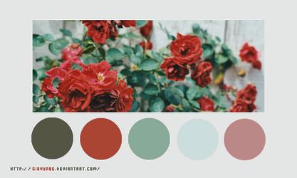 Color palette 024