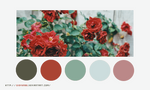 Color palette 024