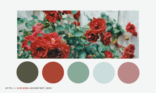 Color palette 024 by Giovyn86