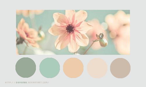 Color palette 025