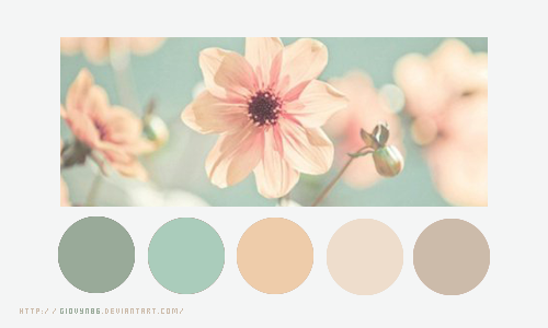 Color palette 025 by Giovyn86