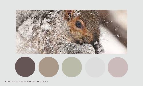 Color palette 026