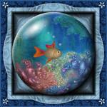 Gift Box Marble - VG Fish