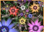 Zebedee's Spring Garden