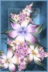 Art of the Florist