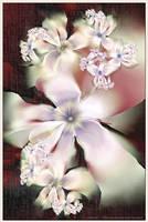 Orchid Blush by Velvet--Glove