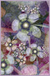 Helleborus Mosaic
