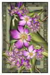 Violet Splendour
