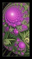 Hot Pink Hydrangea by Velvet--Glove