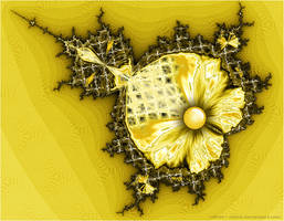 Yellow Mandy by Velvet--Glove