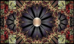 016 - Black Dahlia