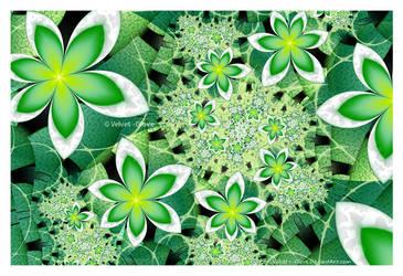 Garden Greenery by Velvet--Glove