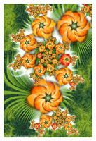 Flowering Orange by Velvet--Glove
