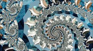 Shells by Velvet--Glove