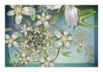 Argentium Bouquet