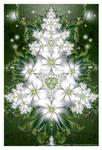 Meditation In White
