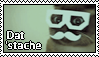 'Stache Kitteh