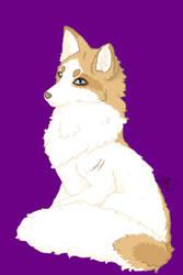 Fox Snouts by AnnaLouis3