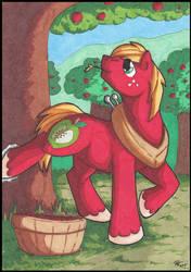 Apple Buck by StormBlaze-Pegasus