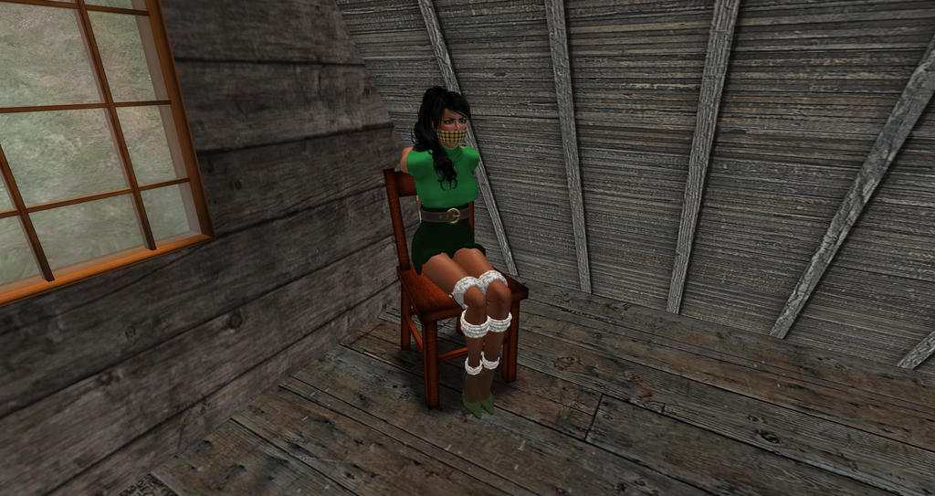 Kim chairtied in the attic by snowcat202