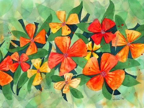 Tropical Flower Splash