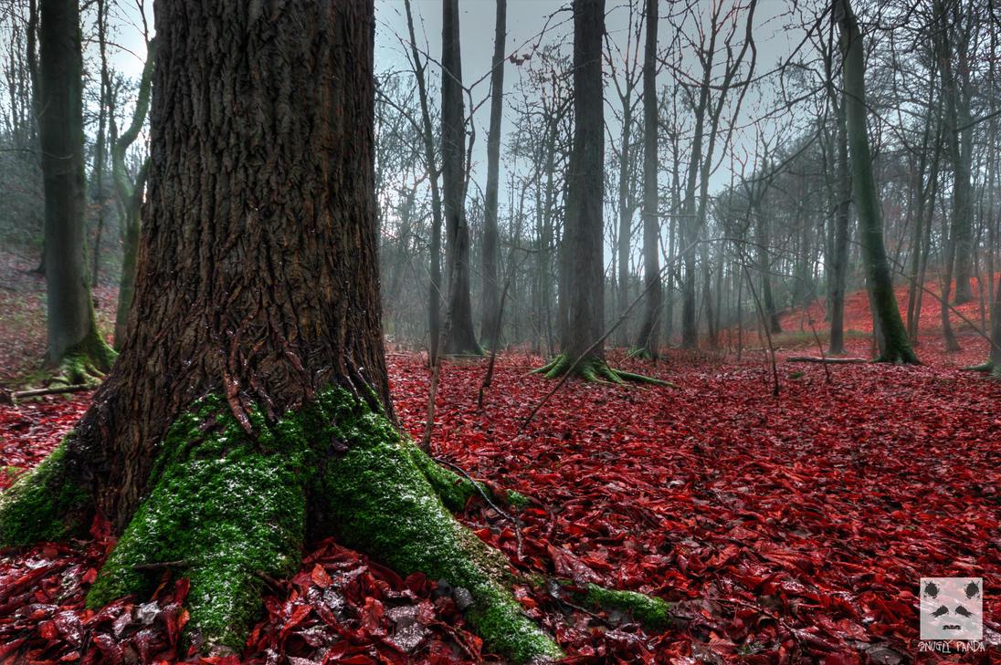 A Moment Between Seasons by snuglyPanda