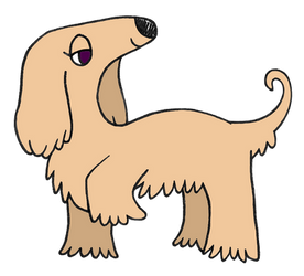 Day 24: Afghan Hound by Alice-of-Africa