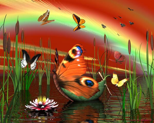 خلفيات فراشات جامده Butterfly_boat_by_Bambolay