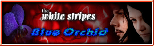 SOTW_Music_and_Bands_by_barbieq25.png