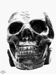 Skullll from home by megadef