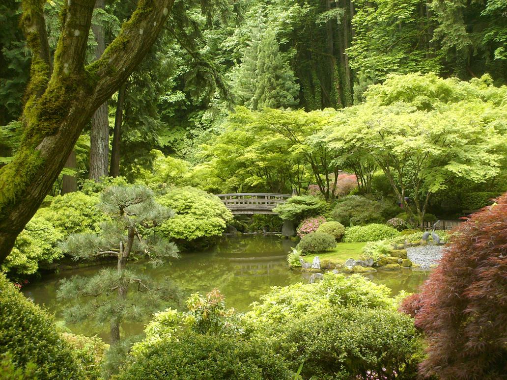 Japanese zen gardens 10 by ebazz8305 on deviantart for Japanese zen garden