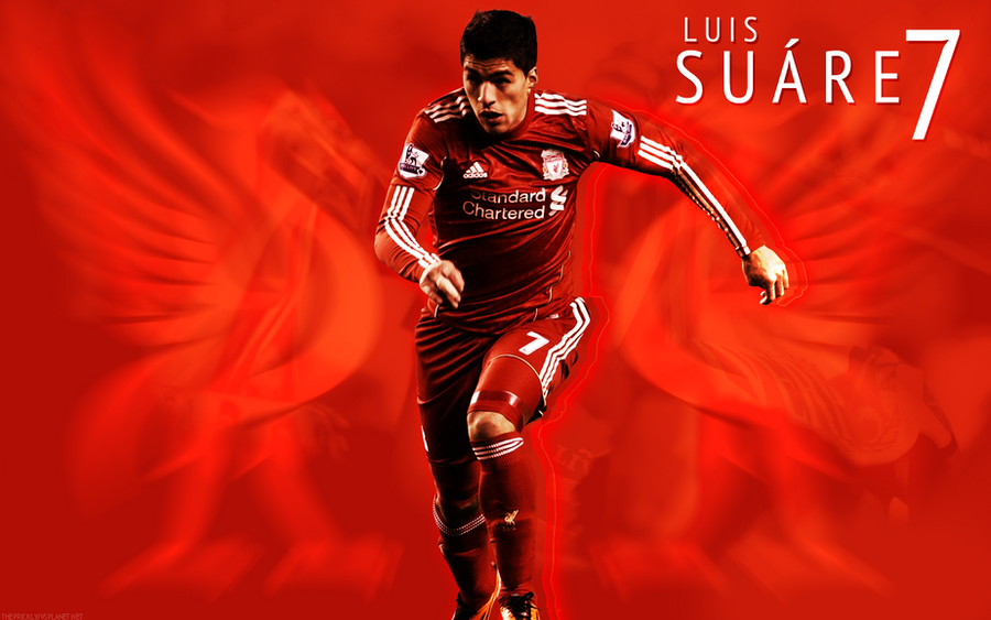 Lfc luis suarez wallpaper by theprickly on deviantart - Suarez liverpool wallpaper ...