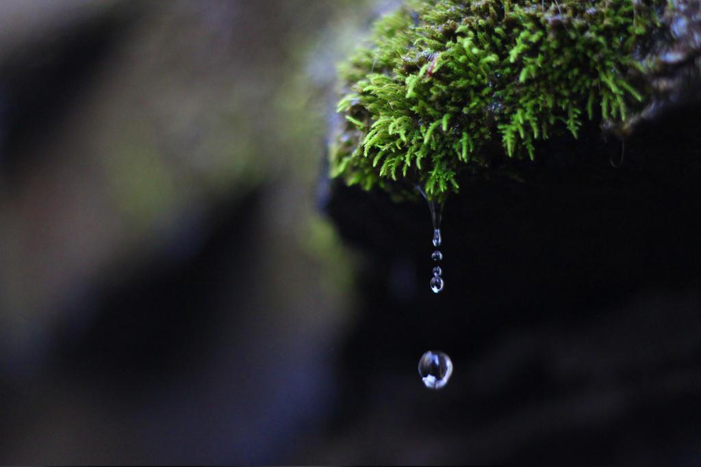 Dixon Falls by cazador24