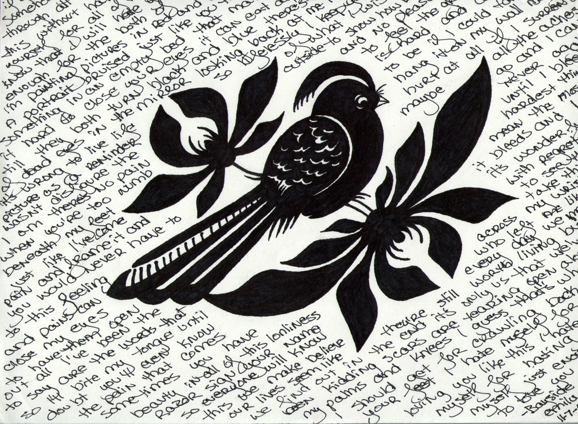 Bayside bird