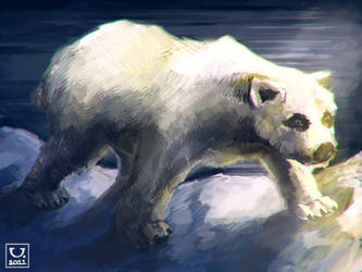 Polar Bear by carloscara