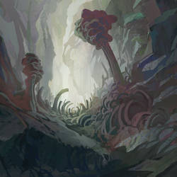 fungal grotto