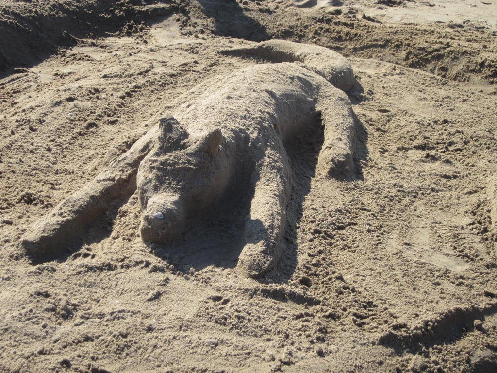 Sandwolf by musicwolfey